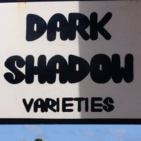 Dark Shadow Varieties