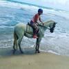 Jahworks Equestrian Centre