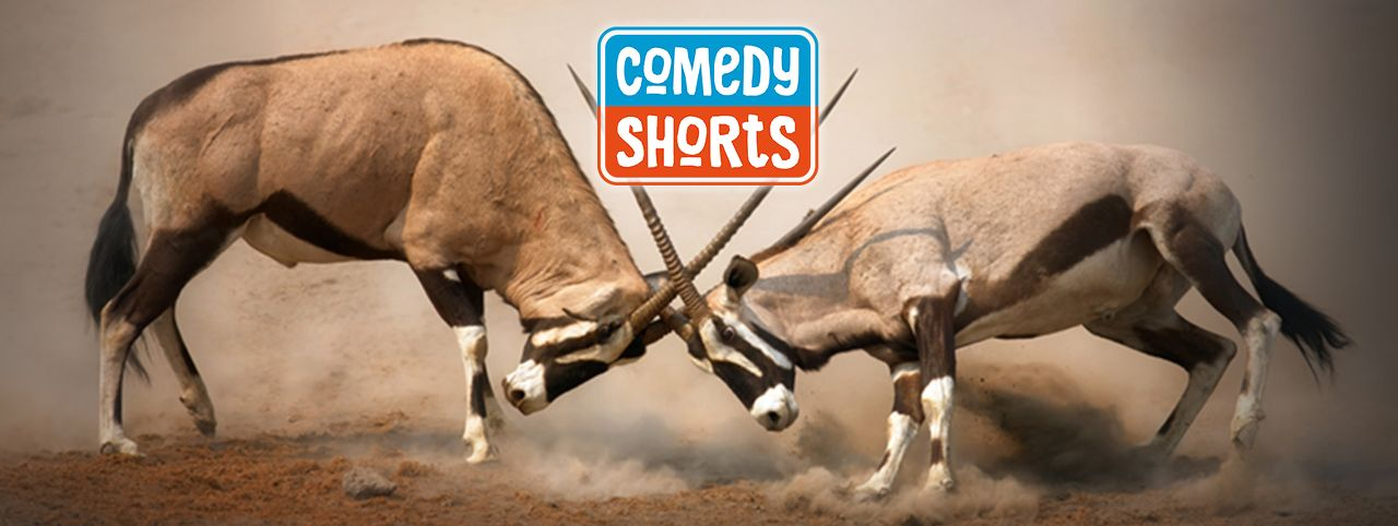 ComedyShorts joins Cosmic Comedy Berlin