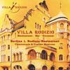 Villa Rodizio