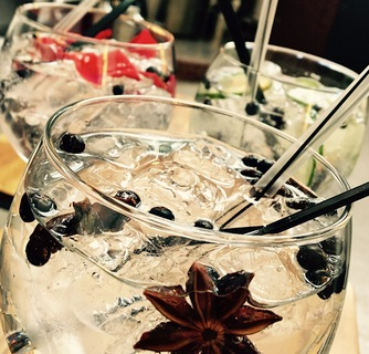 Workshop Gin Maken