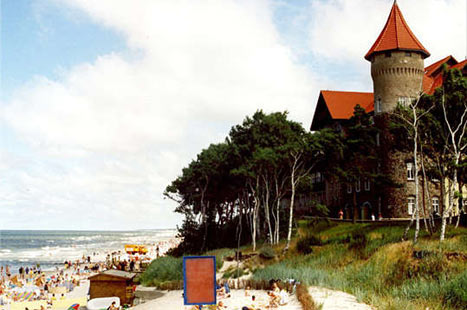 Seaside Shenanigans