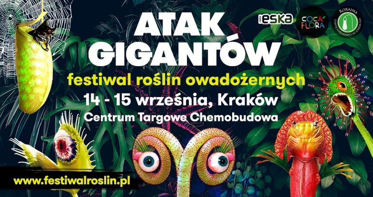 ATTACK OF GIANTS / Insectivorous Plant Festival