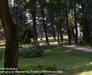 Parks of Cracow: Park at ul. Monastery / walk