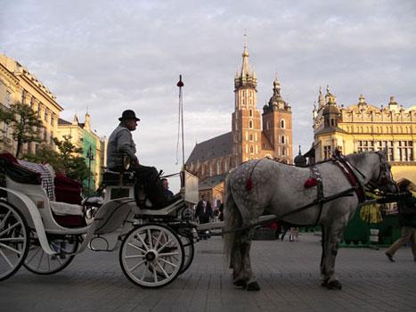 The Rynek (Market Square)
