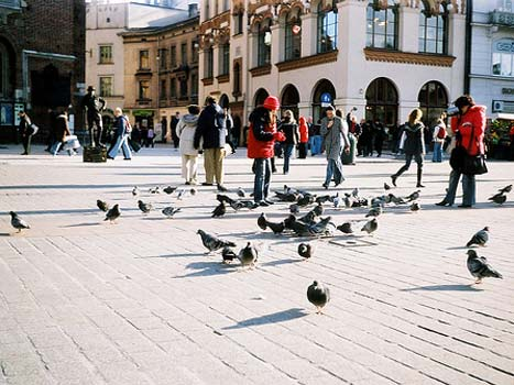 Cracow Poland - everything you need to know!