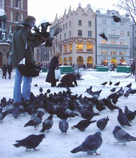 The Prince, the Pigeons and a Putrid Hag