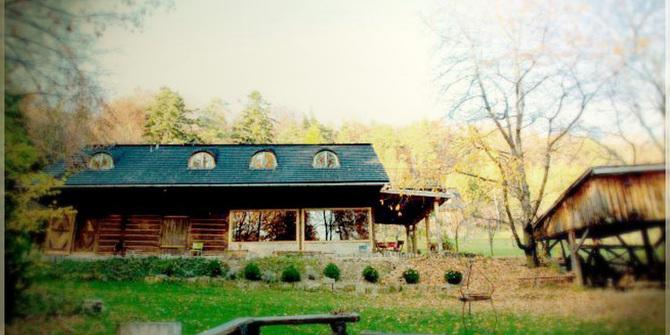 Lesniakowka House