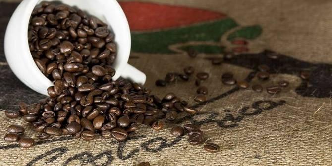 Photo 1 of Jawa Coffee Roaster's