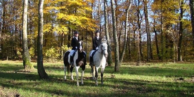 Photo 1 of Tabun Horseriding