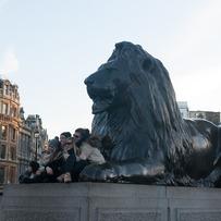 Lions of Trafalgar Square