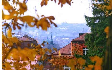 Lviv Autumn