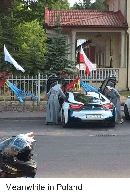 meanwhile-in-poland-36107430