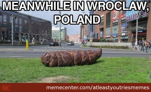 meanwhile-in-poland_c_2629237