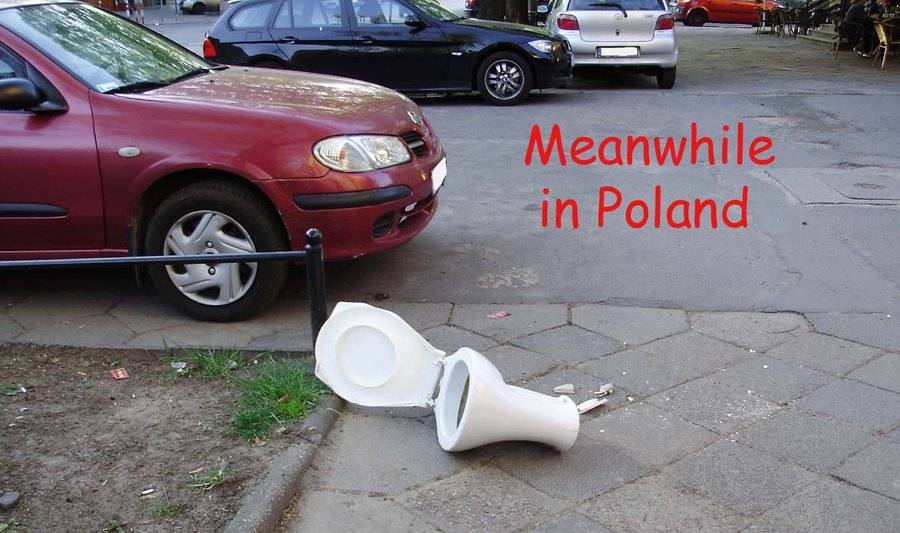 meanwhile_in_poland_by_levvvar-d4sfvau