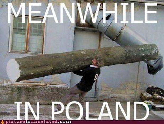 z14807444Q,Tymczasem-w-Polsce--Meanwhile-in-Poland