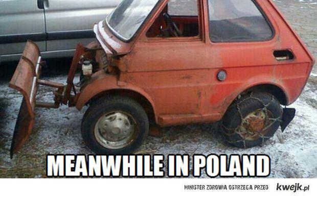 z14807454Q,Tymczasem-w-Polsce--Meanwhile-in-Poland