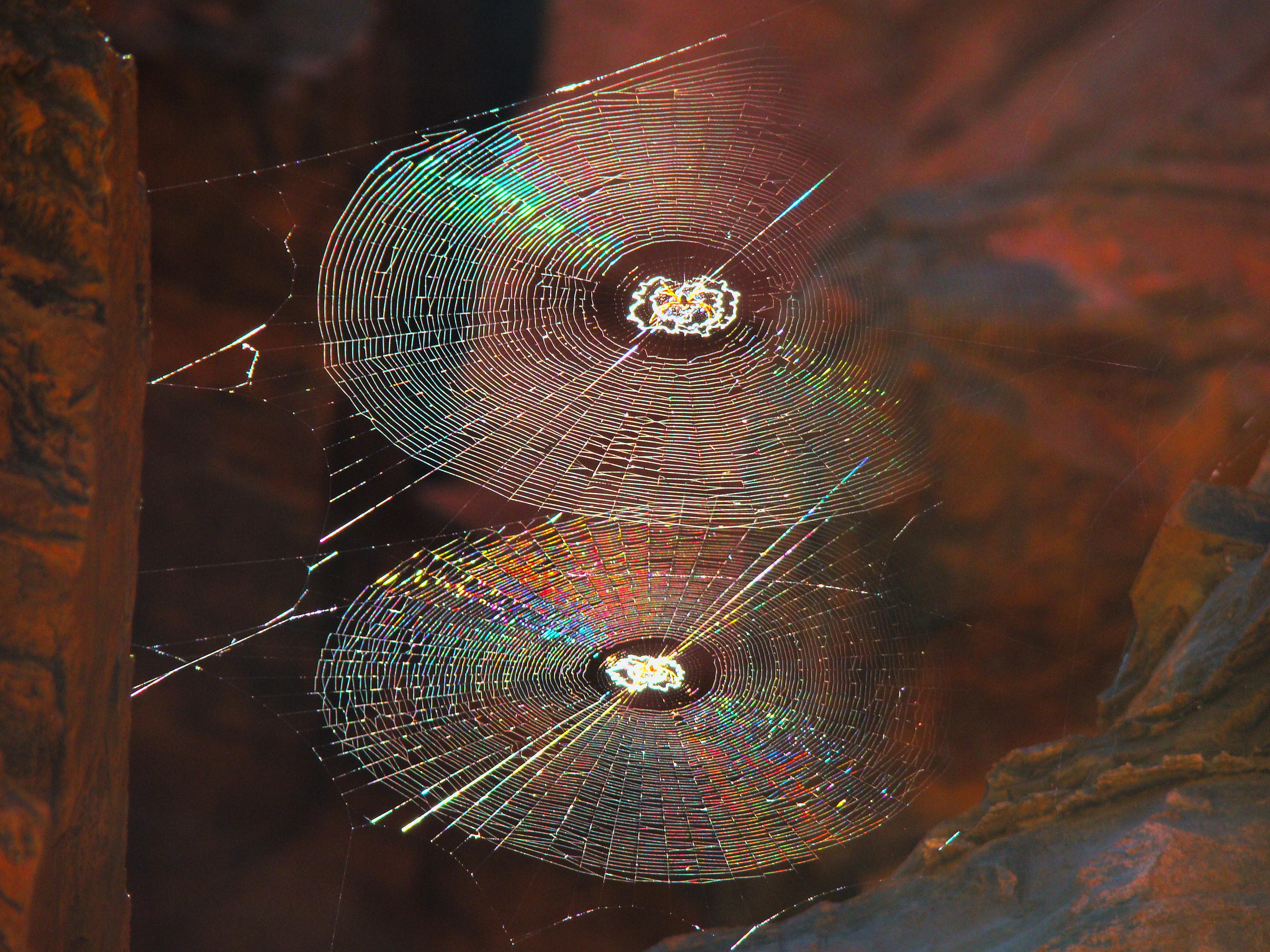 Pajaki chandelier a traditional polish springtime craft spiralorbwebs arubaitofo Choice Image
