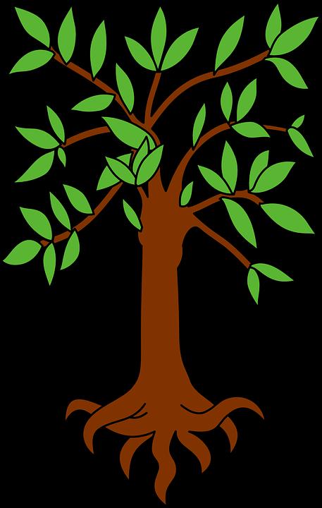 tree-883996_960_720