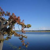 River Lielupe