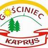 Gosciniec Kaprys logo