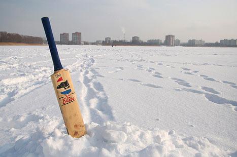 It's Cricket Jim...