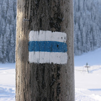 Path sign in Winter