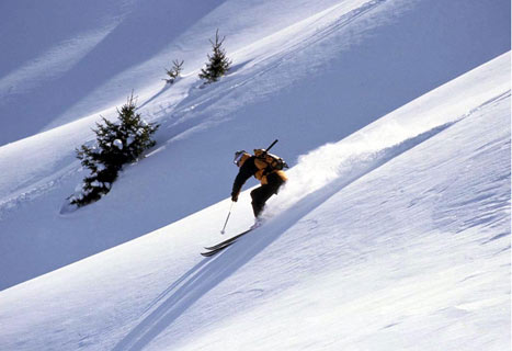 Grab A Piste Of The Action