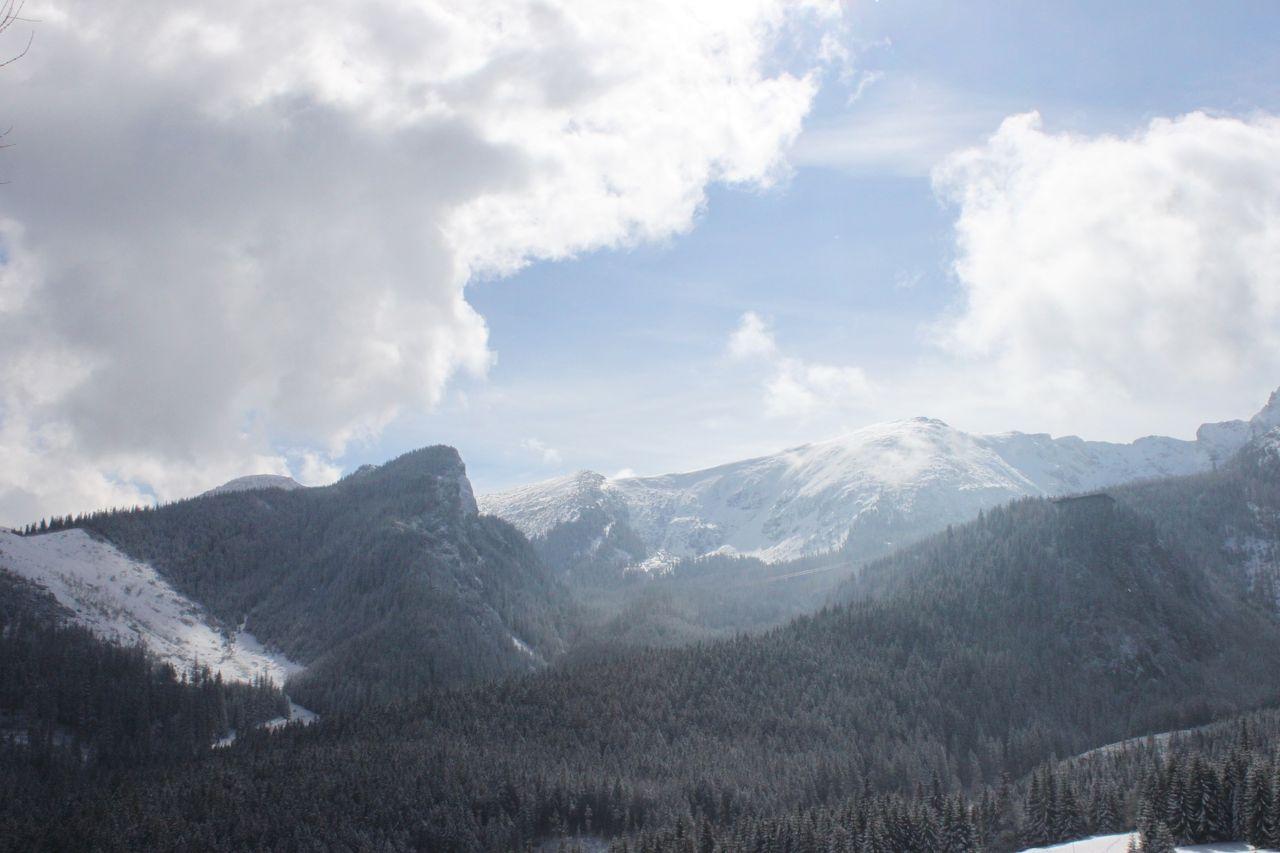Photo 1 of Witow - Ski