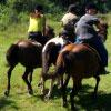 Horseback Touring logo